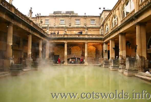 Dog Friendly Attractions Bath
