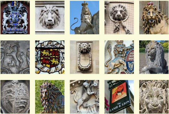 Lions around Bath