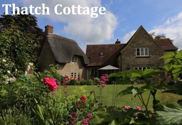 Thatch Cottages Bed & Breakfast
