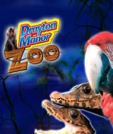 Drayton Manor's amazing zoo, which is home to over a hundred different animal species from around the world, including big cats, monkeys, and birds of prey.