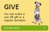Make a donation to the Dog Trust