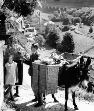Chalford donkey delivery service in 1935