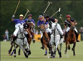 Cirencester Park Polo Game