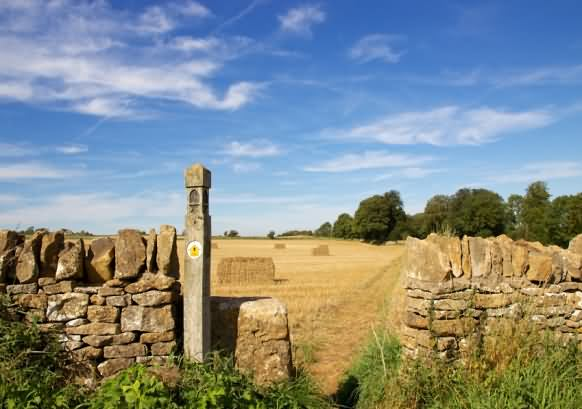Cotswold Way Walk