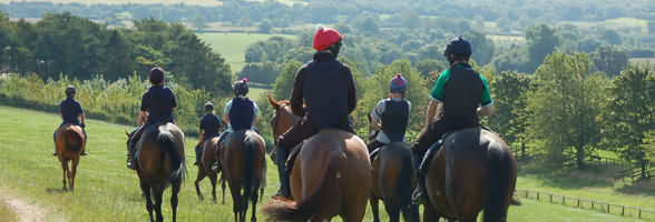 racehorse training in the Cotswolds