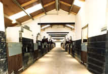 Stables at the Cotswolds Riding centre Stanton, Nr Broadway, Worcestershire