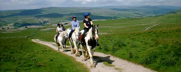Horse riding and treking
