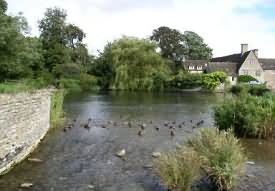 Duck Pond on the edge of the town