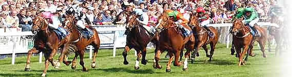 Sailsbury Horse Racing