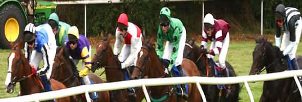Worcester Horse Racing at Pitchcroft