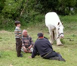 Gypsies negotiating over the sale of a horse