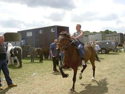 Young Gypsy Lad bare back riding at full trot
