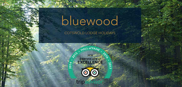 Blue Wood Lodges