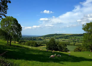 Landscape of the Cotswolds
