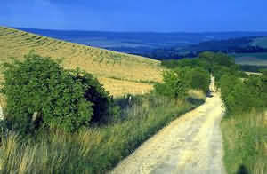 If you are a walker, then try the ancient Ridgeway National Trail which is just 3.5 kilometres out of town.